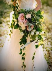 Ivy is used in Celtic bridal bouquets as a symbol of fertility.