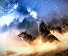 Those born under the sign of the Celtic wolf are fiercely loyal and protective of the members of their pack.