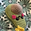 Thumbnail: Ava  (half an avocado )