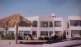 BioGeometry Red Sea Hurghada Architecture