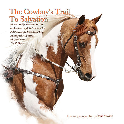 The cowboy's trail to salvation book by Linda Finstad