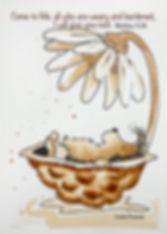 5x7 hedgehog in shell.jpg