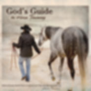 God's guide to horsse training book by Linda Finstad