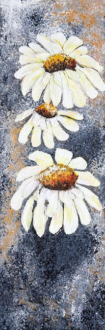 3 daisies.jpg
