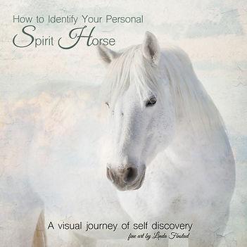 Spirit horse front cover.jpg
