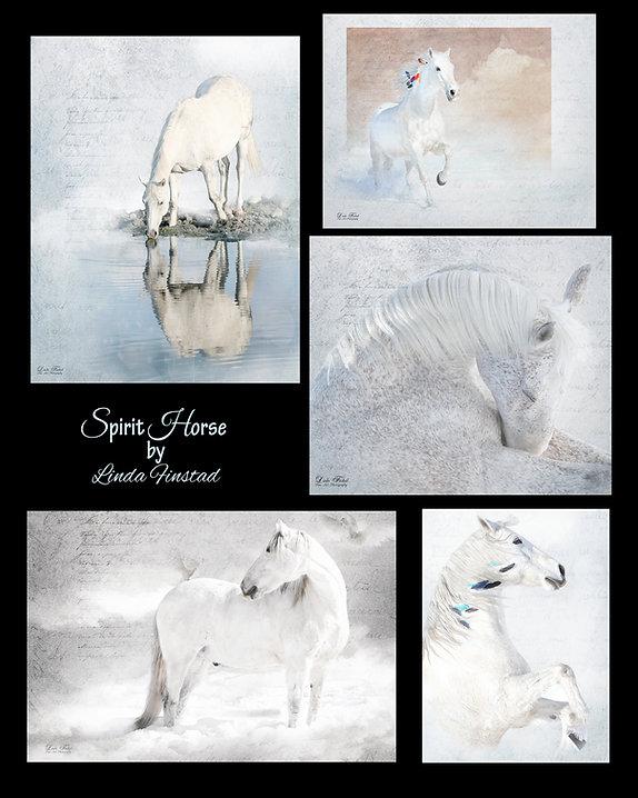 spirit horse montage.jpg