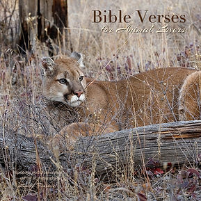 Bible verses for animal lovers book by Linda Finstad