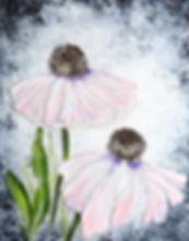 clover patch.jpg