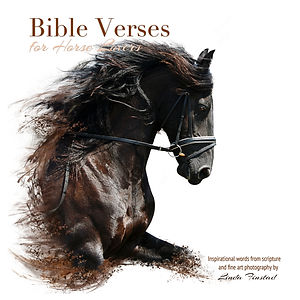 Bible verses for Horse Lovers book by Linda Finstad