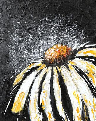 2 black daisy.jpg