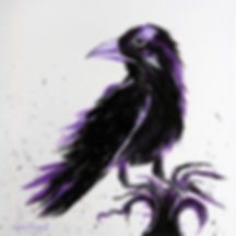 raven 14x14.jpg