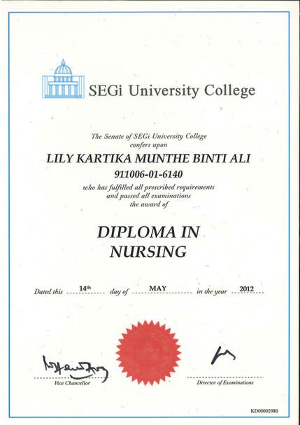Diploma in Nursing