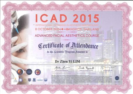 Advanced Facial Aesthetic Course