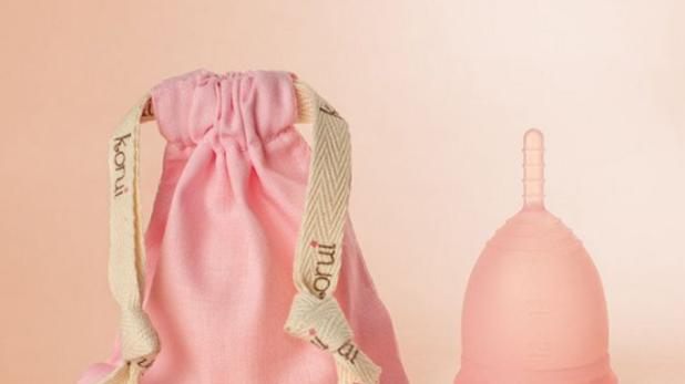 Coletor Menstrual Fluxo Moderado - Cor Flor de Cerejeira