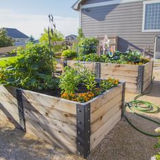 GardenBox13.jpg