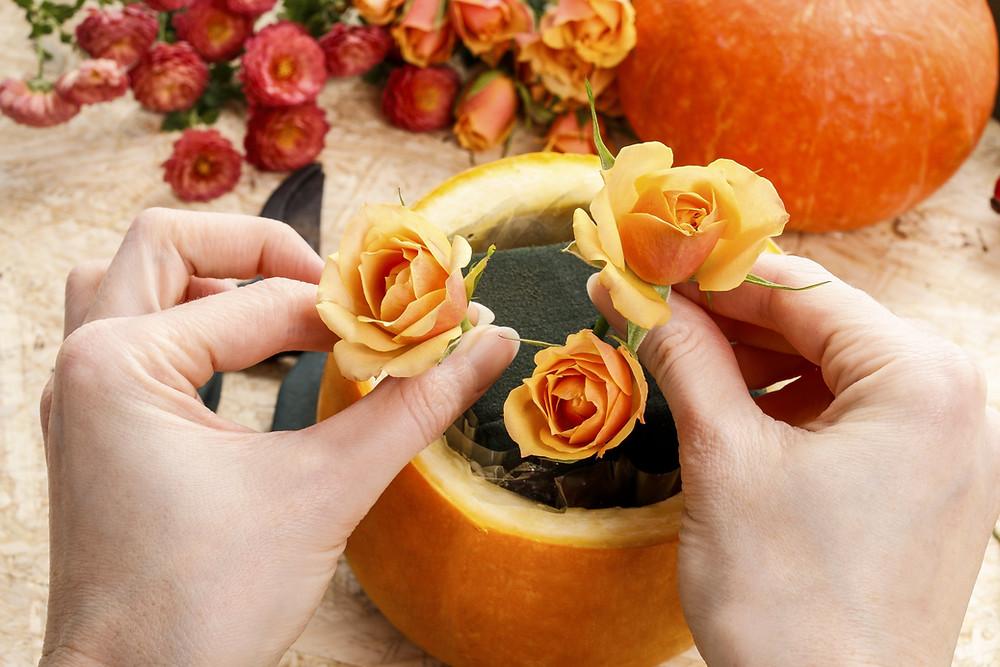 turn your pumpkins into pots
