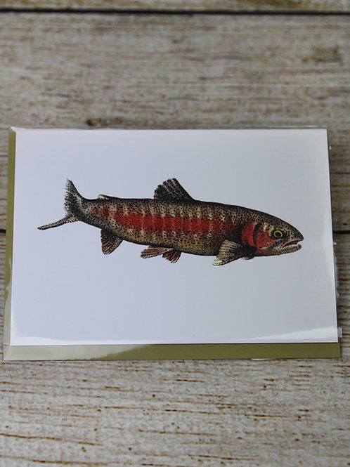 Brook Trout Blank Greeting Card
