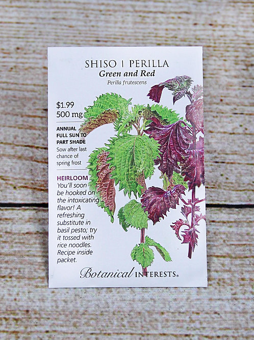 Shiso/Perilla (Green and Red)