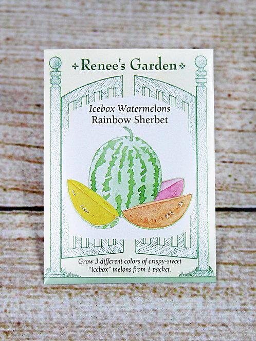 Icebox Watermelons - Rainbow Sherbet Seeds