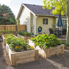 GardenBox1.jpg