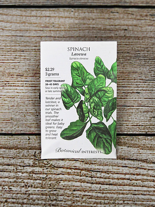 Spinach - Levewa Seeds