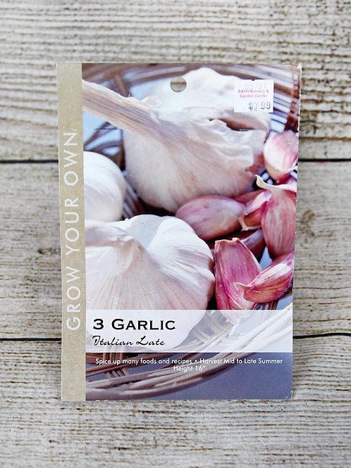 Garlic - Italian Late
