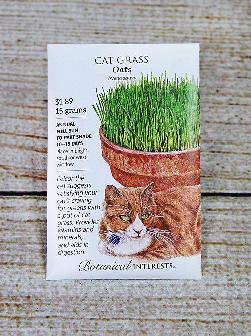 Cat Grass (Oats)