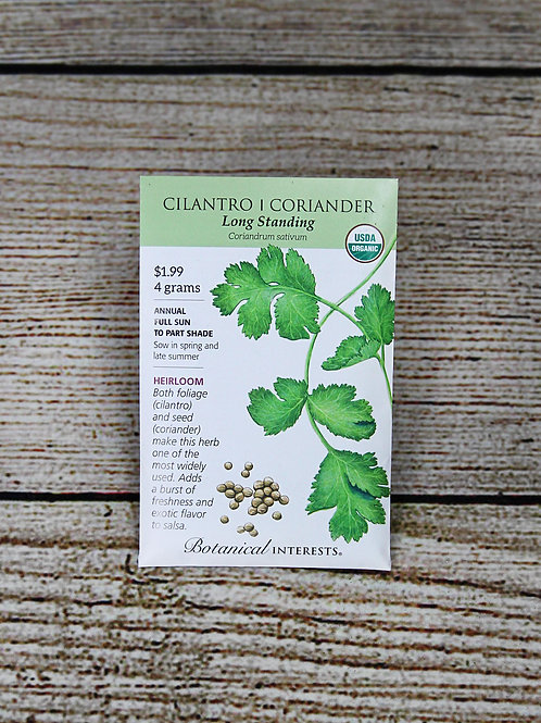 Cilantro/Coriander, Organic (Long Standing)