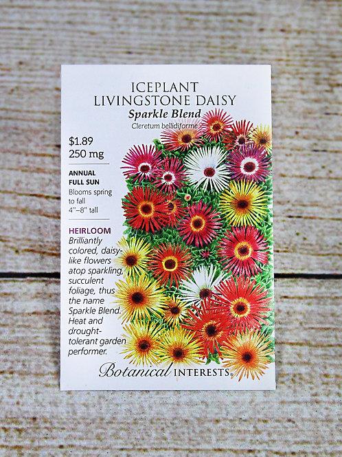 Iceplant, Livingstone Daisy (Sparkle Blend)