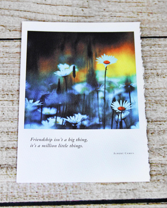 Daisies with Quote - Friendship Card