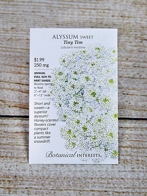 Sweet Alyssum - Tiny Tim Seeds
