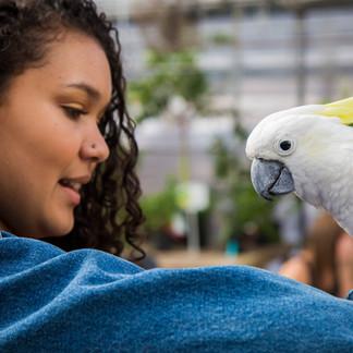 Bird Day 2012