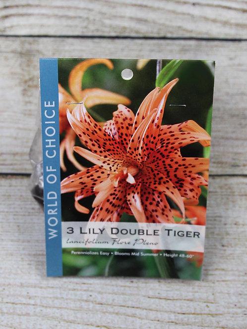Tiger Lily Bulbs - Lancifolium Flore Pleno