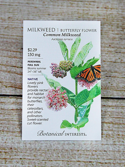 Common Milkweed - Butterfly Flower Seeds