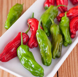 Our Favorite Pepper Varieties