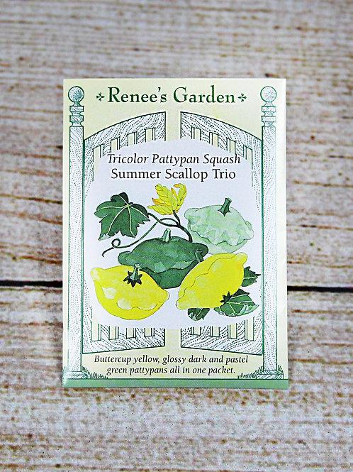 Tricolor Pattypan Squash Summer Scallop Trio