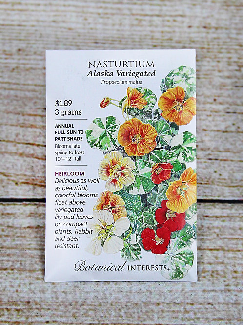 Nasturtium (Alaska Varigated)