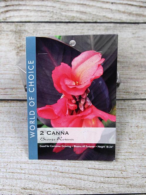 Canna Bulbs - Bronze Rosever