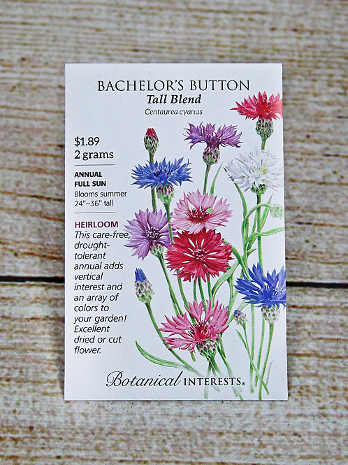 Bachelor's Button - Tall Blend Seeds