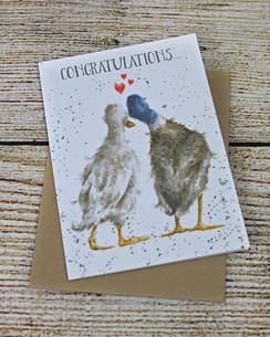 Duck Love - Congratulations Card