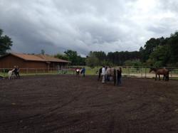 école shiatsu équin sud ouest