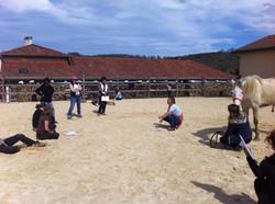 Larroque - avril 16 stage initiation école shiatsu équin