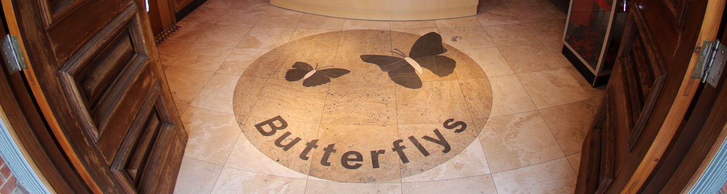 Welcome to Butterflys