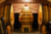 jardin de la cathédrale chambre d'hotes troyes vincent-larcher