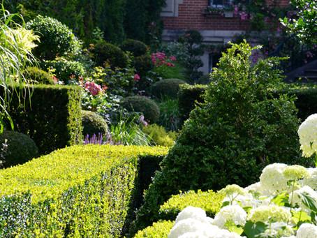 Jardin en Champagne