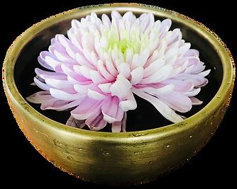 SoulFire Sound Therapy lotus bowl logo.p