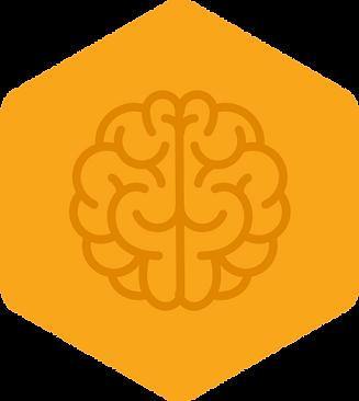 brain_hexagon_icon.png