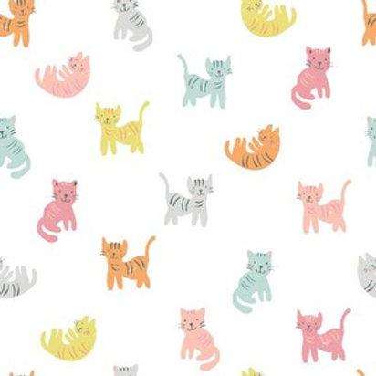 colour kittens ravioli