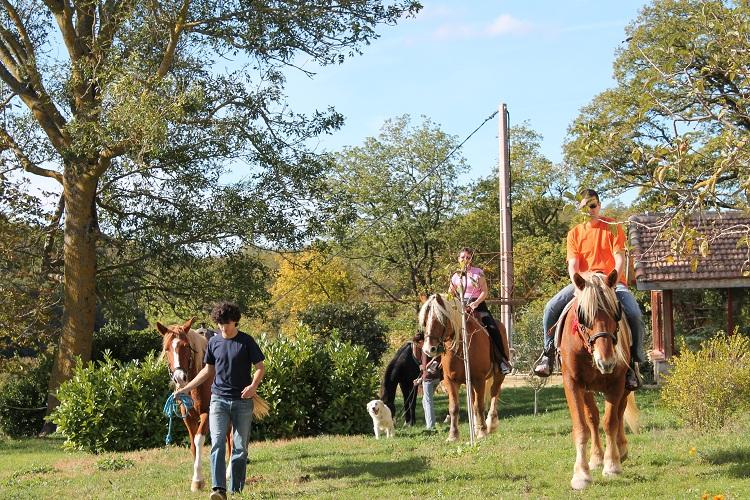 chevaux_IMG_0096