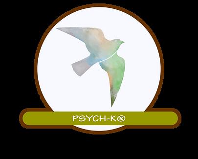 Dolf van Craanenburgh PSYCH-K
